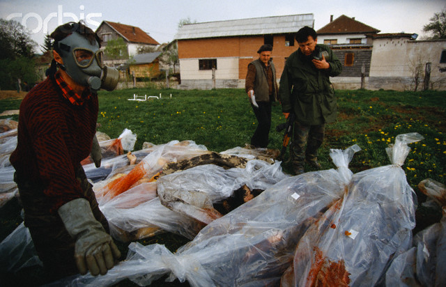 Bodies of Bosniak (Bosnian Muslim) civilians killed by Croats in Vitez, 25-30 April 1993.
